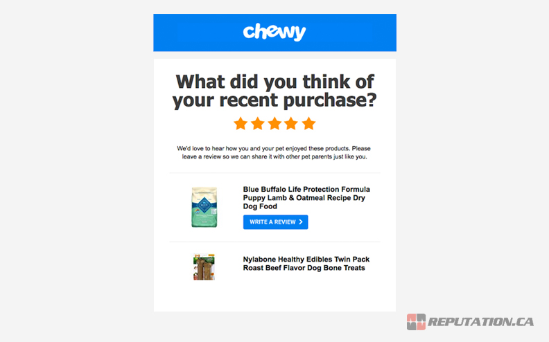 Example Email Review