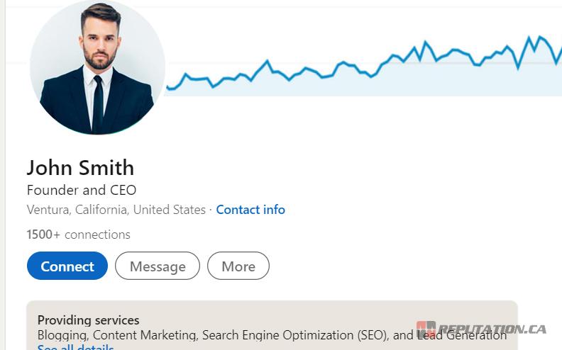 CEO LinkedIn Profile